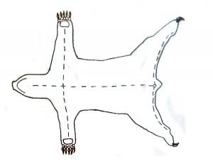 bear-rug
